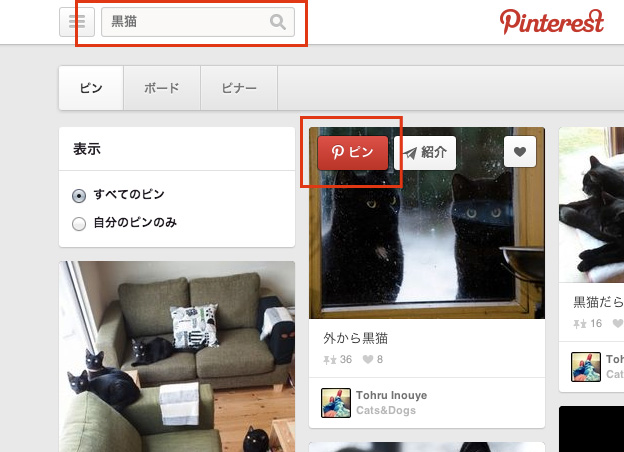 Pinterest-black-cats2
