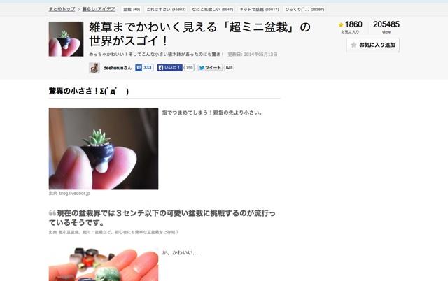 雑草までかわいく見える「超ミニ盆栽」の世界がスゴイ!   NAVER まとめ