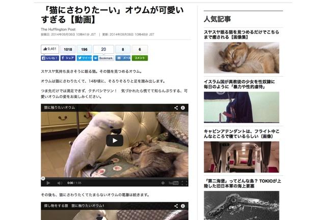 「猫にさわりたーい」オウムが可愛いすぎる【動画】