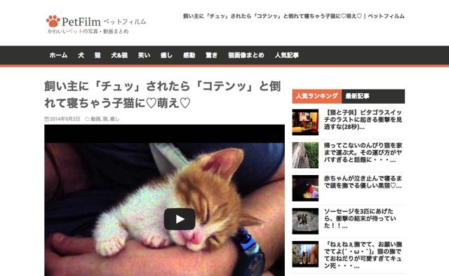 飼い主に「チュッ」されたら「コテンッ」と倒れて寝ちゃう子猫に♡萌え♡ ペットフィルム  ペットのおもしろ 可愛い画像・動画まとめ petfilm.biz