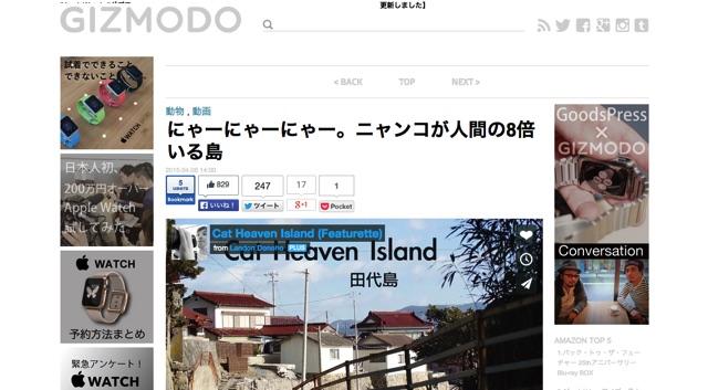 にゃーにゃーにゃー。ニャンコが人間の8倍いる島   ギズモード・ジャパン