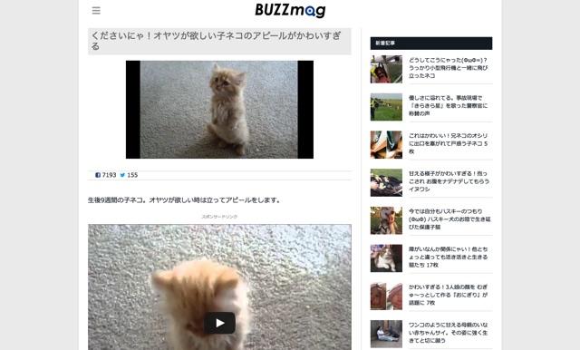 くださいにゃ!オヤツが欲しい子ネコのアピールがかわいすぎる   BUZZmag