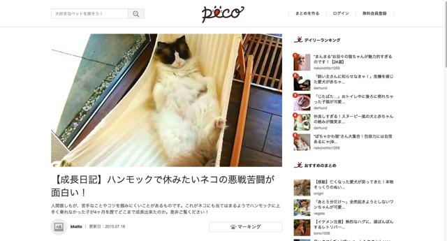 【成長日記】ハンモックで休みたいネコの悪戦苦闘が面白い!    PECO  ペコ |ペットとの毎日がもっと楽しくなる