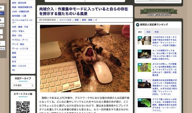 肉球介入:作業集中モードに入っていると自らの存在を誇示する猫たちのいる風景   カラパイア