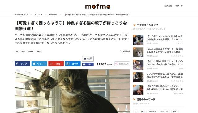 【可愛すぎて困っちゃう♡】仲良すぎる猫の親子がほっこりな画像6選!   mofmo